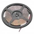3P 500-700MCD 600 x 3528 SMD LED flexível Red Light Strip (5 M de comprimento / DC 12V)
